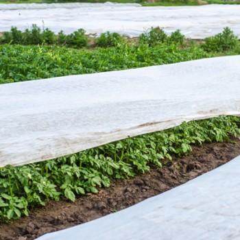 Agril pentru protectia plantelor