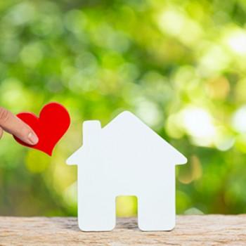 Produse ECOLOGICE pentru casa si gradina