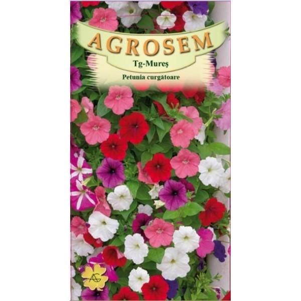 Seminte de flori petunia curgatoare mix, 0,15 grame, Agrosem