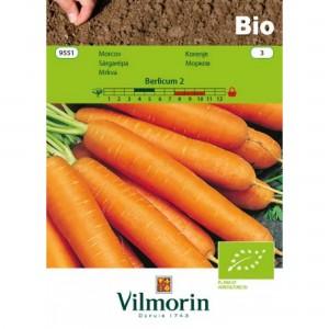 Seminte bio de morcov berlikumer, 2 grame, vilmorin
