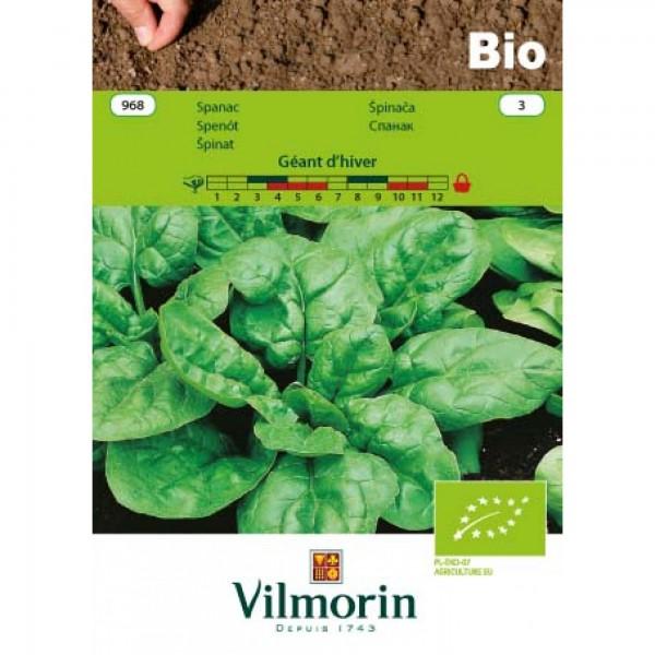 Seminte bio spanac urias de Iarna, 5 grame, vilmorin