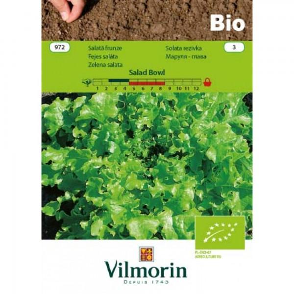 Seminte bio de salata de taiat salad bowl, 3 grame, vilmorin
