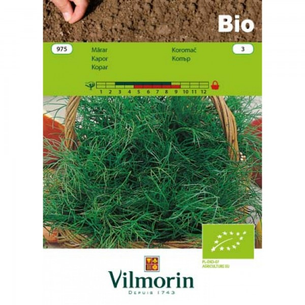 Seminte bio de marar, 5 grame, vilmorin