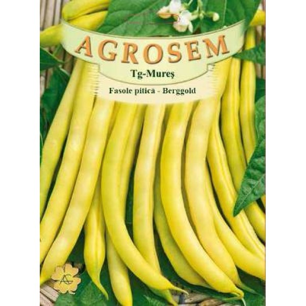 Seminte de fasole pitica galbena Berggold, 50 grame, Agrosem