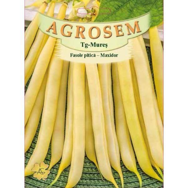 Seminte de fasole pitica galbena Maxidor, 50 grame, Agrosem