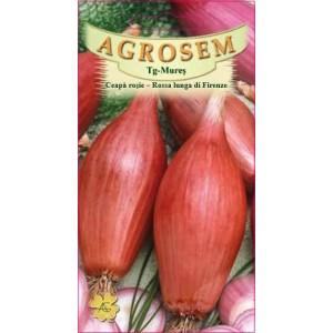 Seminte de ceapa rosie lunga Rossa di Firenze, 2 grame