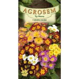 Seminte de flori anuale ciubotica cucului Mix, 0,10 grame, Agrosem