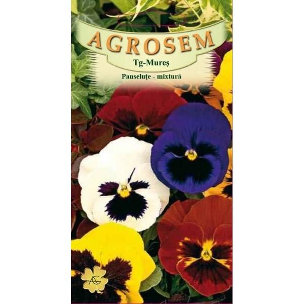 Seminte de flori panselute mix, 0,10 grame, Agrosem