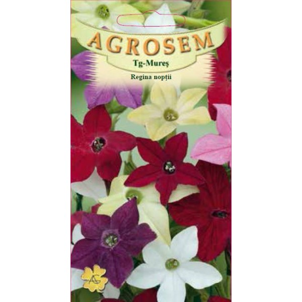 Seminte de flori anuale Regina Noptii Mix, 0,2 grame
