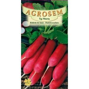 Seminte ridichi de luna Datil Escarlata, 4 grame, Agrosem
