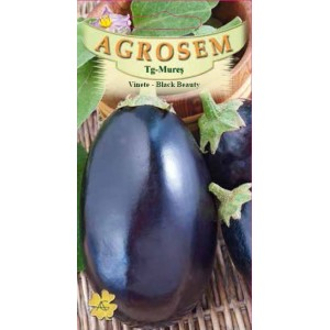 Seminte de vinete Black Beauty, 2 grame