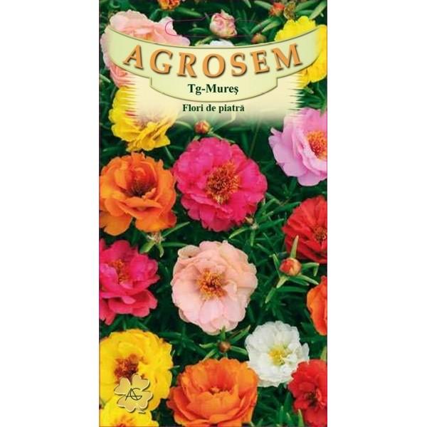 Seminte de flori anuale Flori de Piatra Mix, 0,40 grame, Agrosem