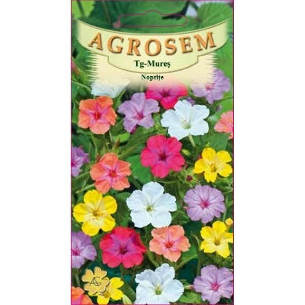 Seminte de flori Noptite - Barba Imparatului Mix, 2 grame, Agrosem