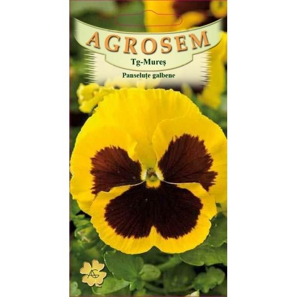 Seminte de flori panselute galbene, 0,10 grame, Agrosem