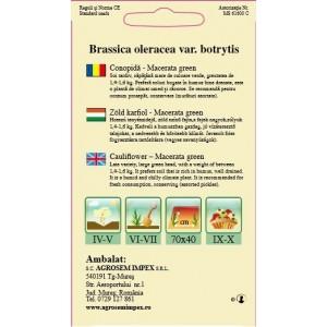 Seminte de conopida verde Macerata Green, 1 gram, Agrosem