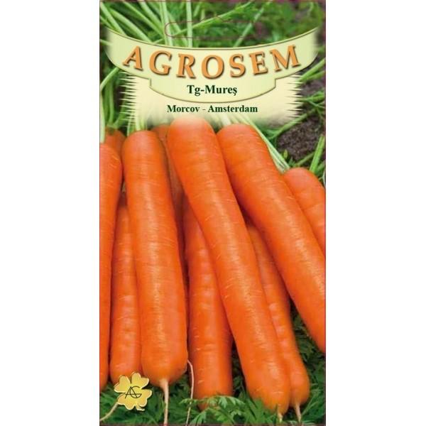 Seminte de morcov Amsterdam, 3 grame