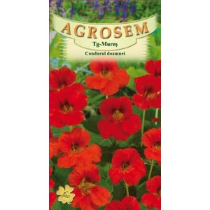 Seminte de flori condurul doamnei rosu, 9 seminte, Agrosem