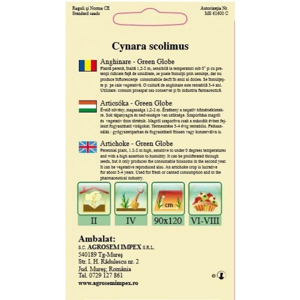 Seminte de anghinare green globe, 1 gram