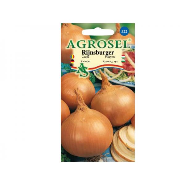Seminte ceapa Rijnsburger 2, 2 grame, Agrosel