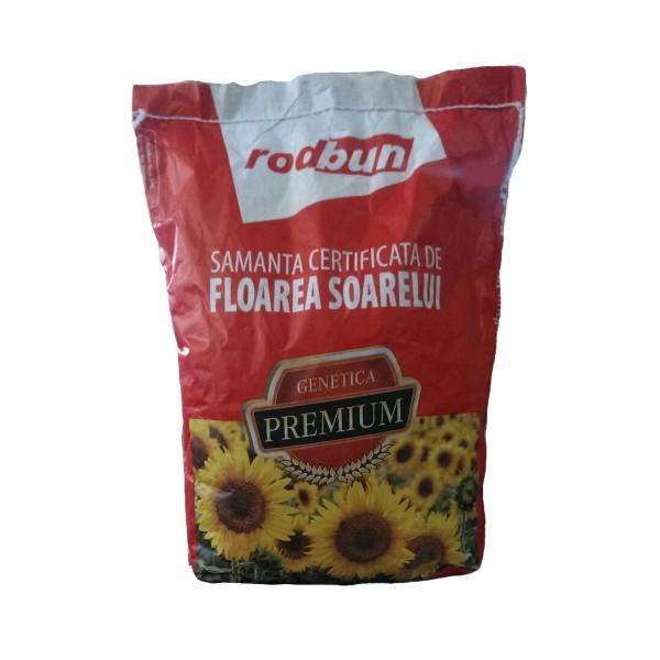 Samanta de floarea soarelui Rustica 170 SU, 75000 seminte, RodBun