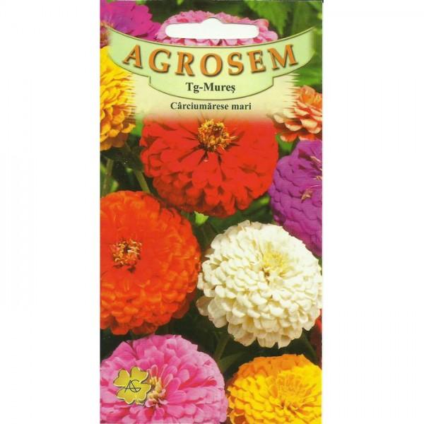 Seminte de flori carciumarese mari mix, 1 gram
