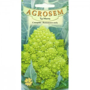 Seminte de conopida Romanesco Early,1 gram
