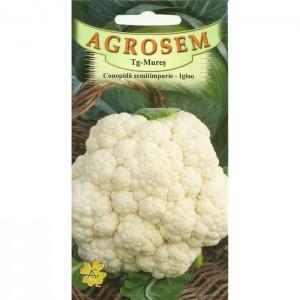 Seminte de conopida semitimpurie Igloo, 1 gram