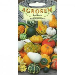 Seminte de dovlecel ornamental mix, 1,5 grame, Agrosem