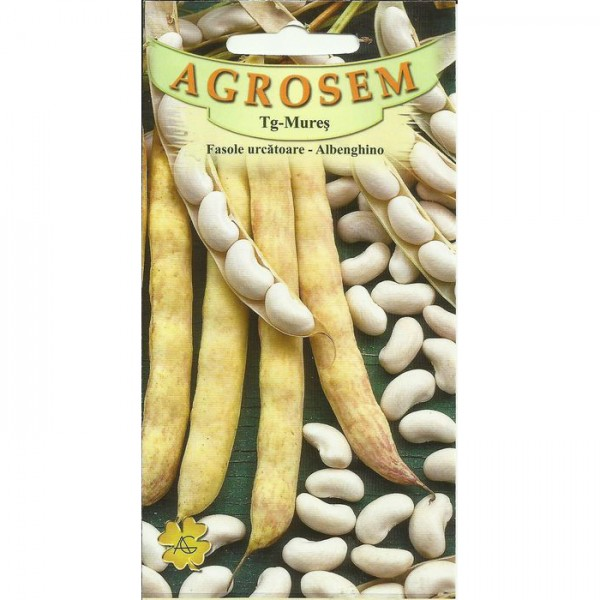 Seminte de fasole urcatoare pentru boabe alba Albenghino, 100 grame, Agrosem
