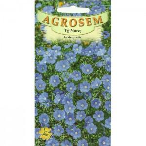 Seminte de flori in decorativ albastru, 1 gram