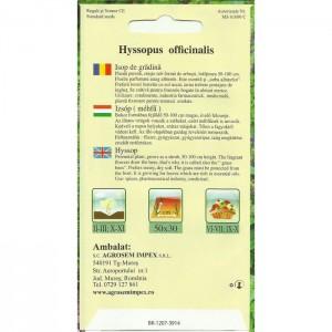 Seminte de Isop de gradina, 0,5 grame, Agrosem
