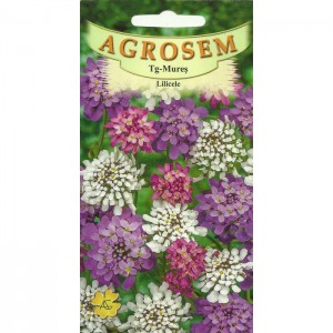 Seminte de flori lilicele mix, 1 gram