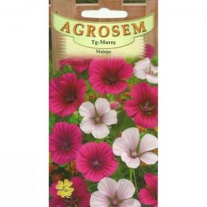 Seminte de flori malope mix, 1 gram, Agrosem