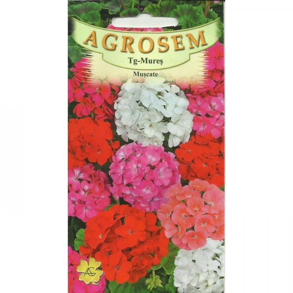 Seminte de flori muscate mix, 3 seminte