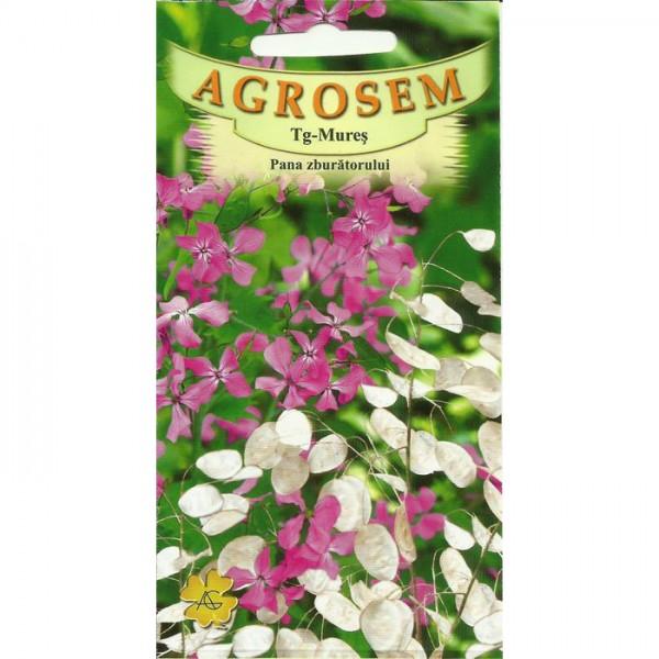 Seminte de flori pana zburatorului 1 gram, Agrosem