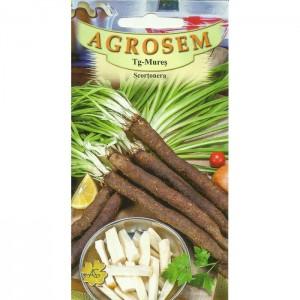 Seminte de scortonera, 2 grame
