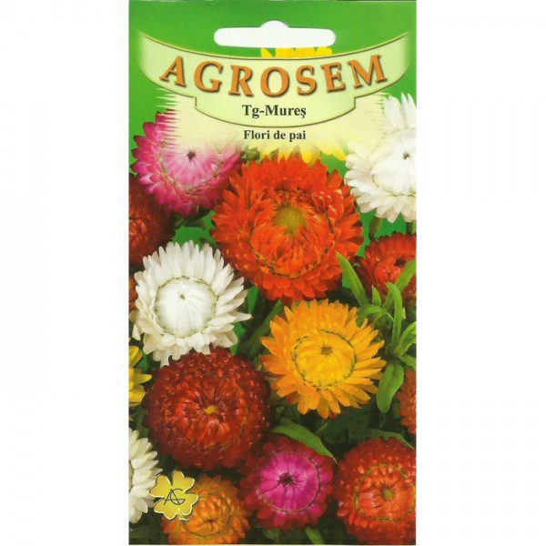 Seminte de flori de pai mix, 0,4 grame