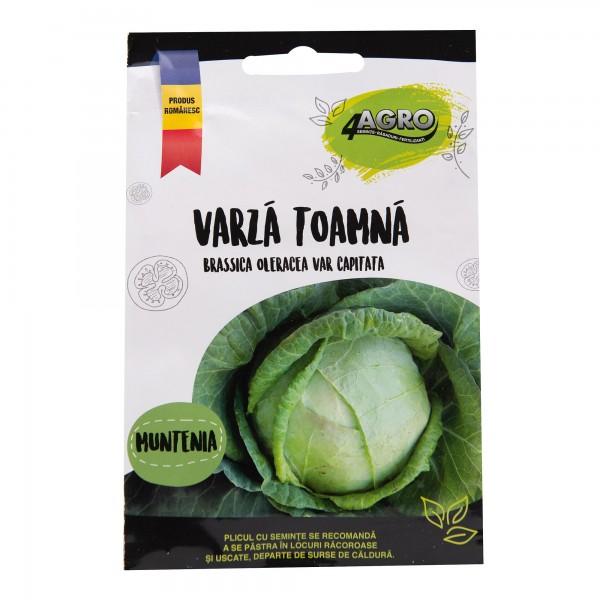 Seminte de varza de toamna Muntenia, 3 grame