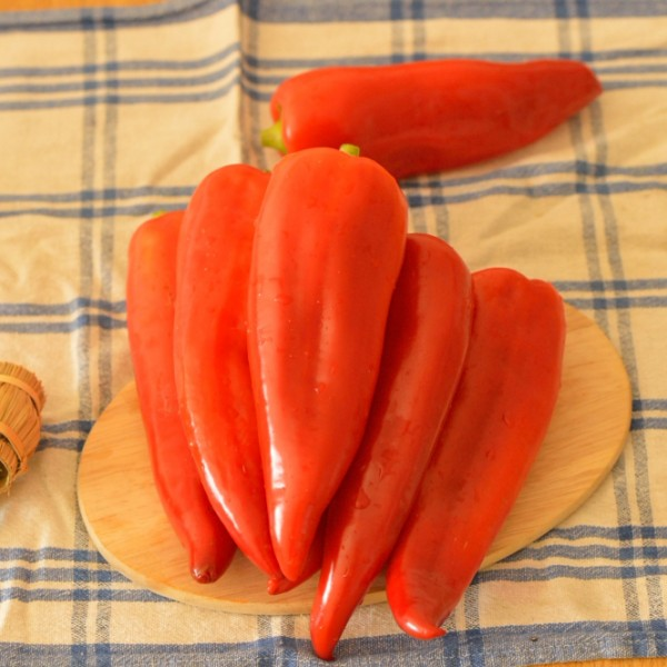 Seminte de ardei kapia semitimpuriu Mircea - 1 gram