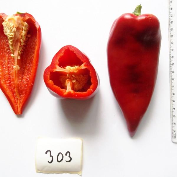 Seminte de ardei kapia semitimpuriu Potaisa F1, 100 seminte, Hektar