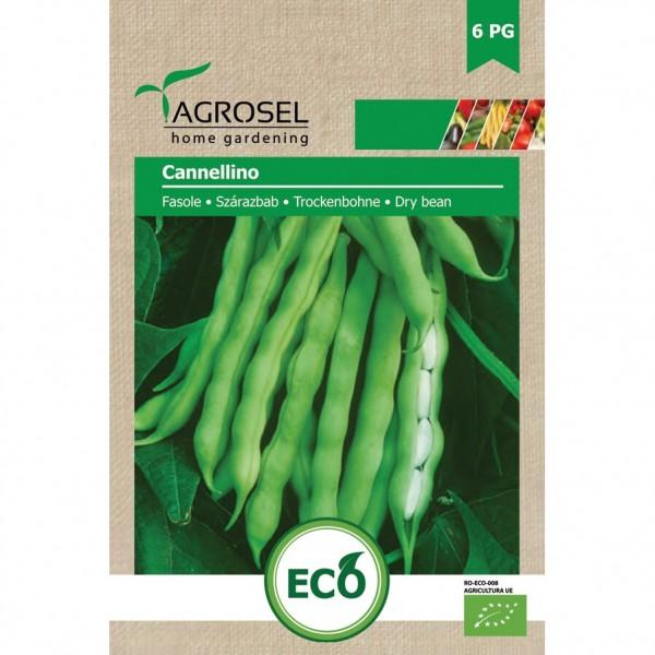 Seminte BIO de fasole Cannellino, 20 grame, PG-6, Agrosel