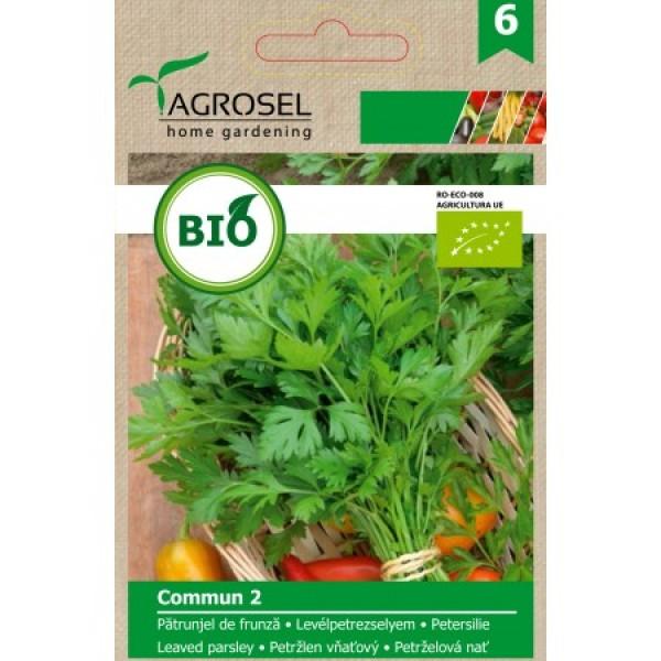 Seminte BIO de patrunjel Commun 2, 2.5 grame, PG-6, Agrosel