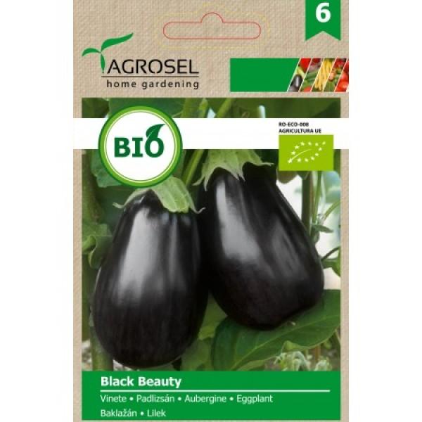 Seminte BIO de vinete Black Beauty, 1.25 grame, PG-6, Agrosel