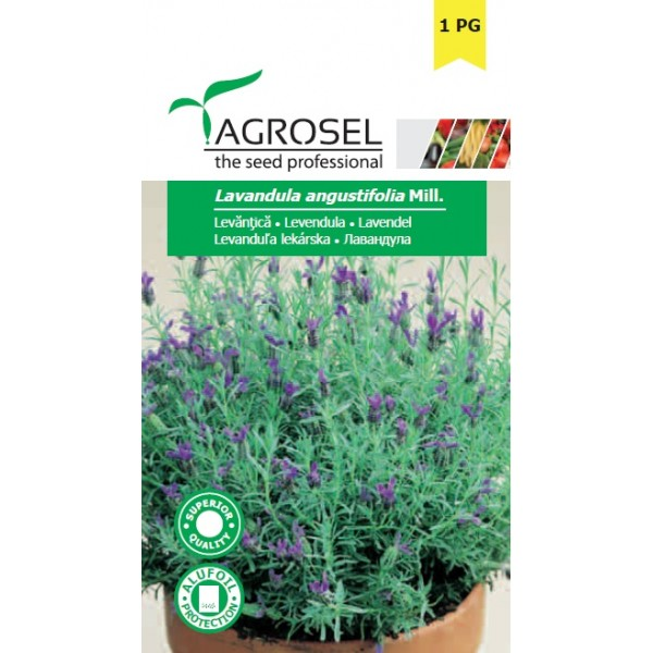 Seminte de levantica, 0,4 grame, PG-1, Agrosel