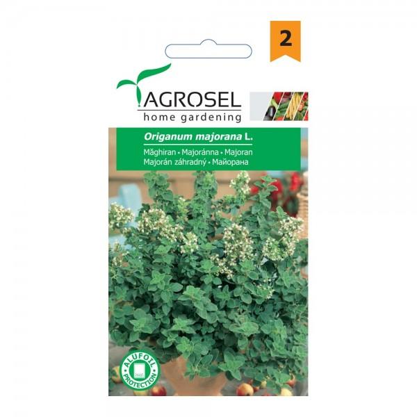 Seminte de maghiran, 1 gram, PG-2, Agrosel