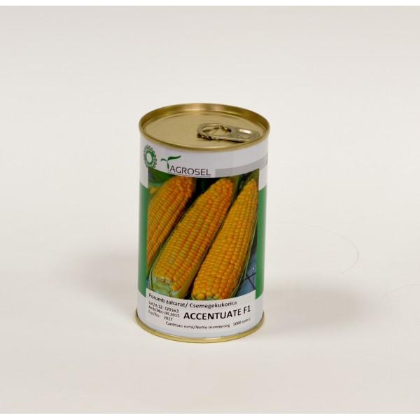 Seminte de porumb zaharat ACcentuate F1, 1000 seminte, Hektar