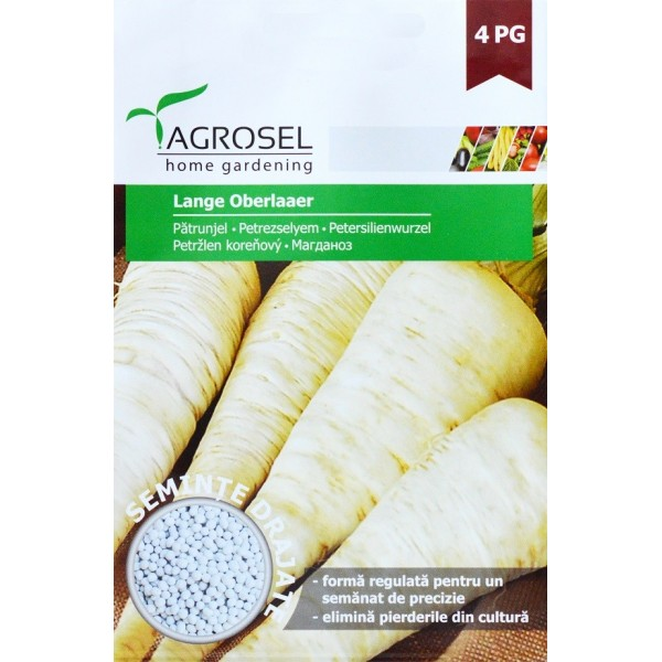 Seminte drajate de patrunjel pentru radacina Lange Oberlaer, 370 seminte, Agrosel