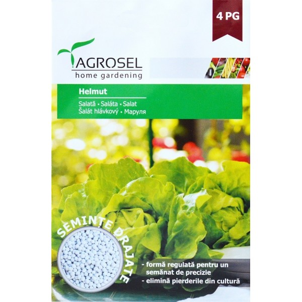 Seminte drajate de salata Helmut, 500 seminte, Agrosel