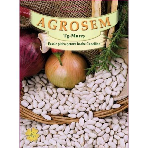 Seminte de fasole pitica boabe Cannellino, 100 grame