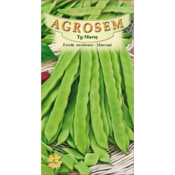 Seminte de fasole urcatoare verde Marconi, 10 grame, Agrosem Impex